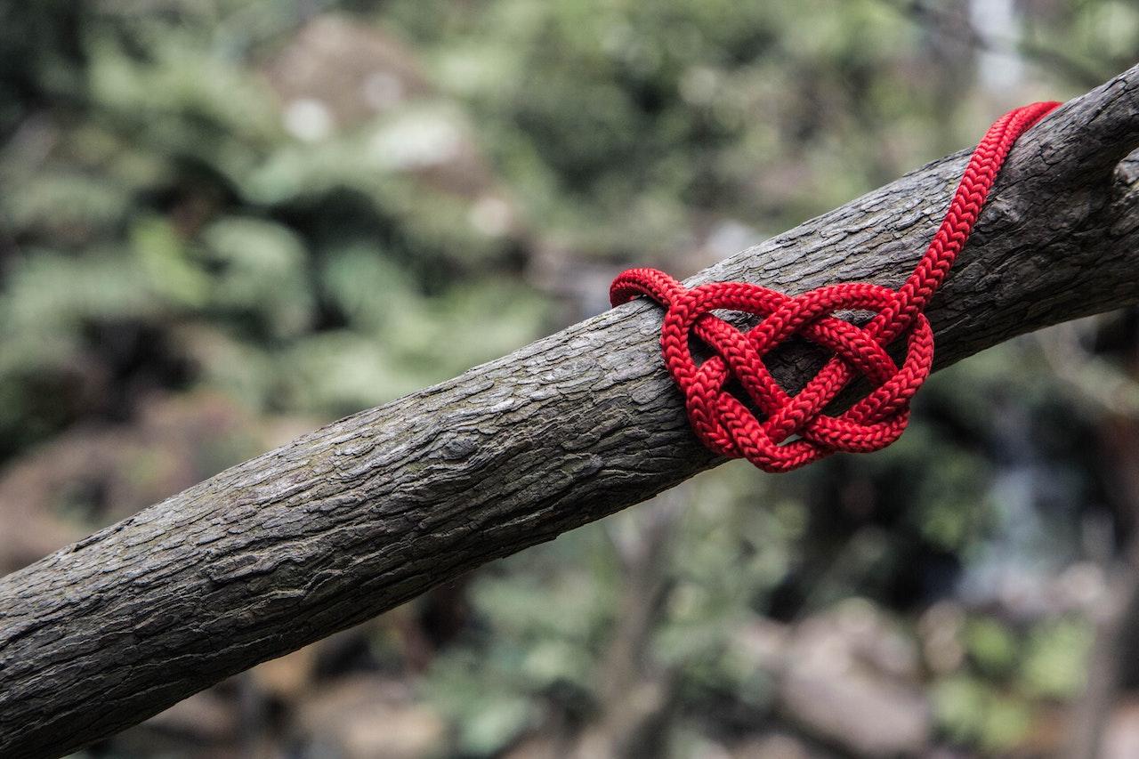 Πλεκτή καρδία σε κλαδί δένδρου