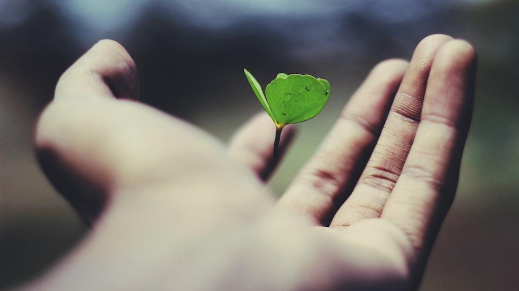 χέρια και πεταλούδα